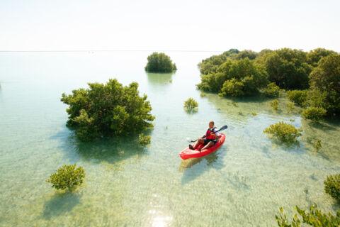 The water | Visit Qatar